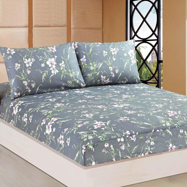 Boska 1000 Thread Count 100% Cotton Fitted Sheet by August Grove